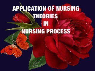 NR501 Application of Nursing Theory