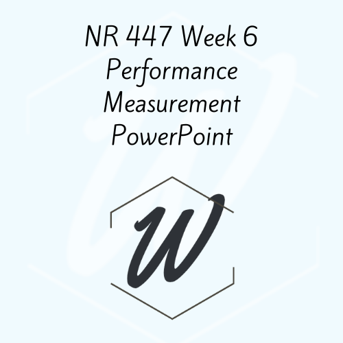 NR 447 Week 6 Performance Measurement PowerPoint